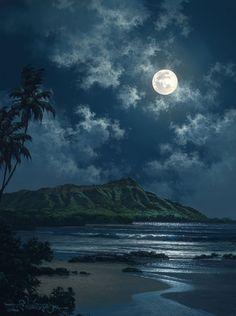 Waikiki Night Sky