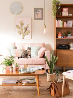 Pink and green interiors | Cactus dreams | Urban Garden décor trend | Maisons du Monde