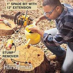 How to Remove a Tree Stump Painlessly | The Family Handyman