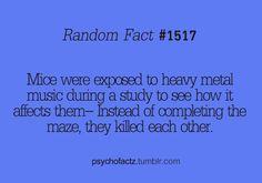 Random Fact #1517