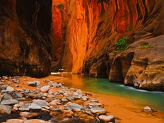 Zion+Canyon+National+Park | High canyon walls and water at ZNP. Photo #9 by Paradise in the World