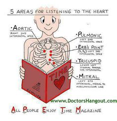 heart auscultation | Heart Auscultation Points | Almost Awesome