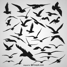 Flying bird silhouette painting tattoo ideas 50 ideas for 2019 Silhouette Tattoos, Silhouette Painting, Silhouette Cameo Projects, Flying Bird Silhouette, Animal Silhouette, Creation Art, Bird Drawings, Flying Bird Drawing, Drawing Birds