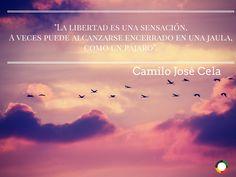 Camilo Jose Cela, Seneca, History Quotes, Powerful Quotes, Writers, Quill, Lyrics