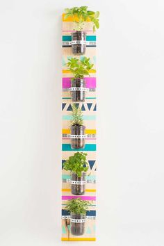 DIY - Jardim vertical para apartamento alugado!