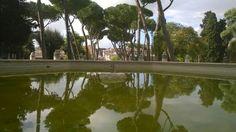 #ColleOppio #reflection