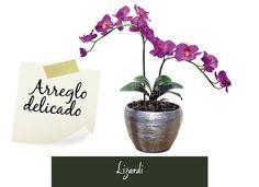 Arreglos florales: La orquídea siempre resulta muy elegante y delicada. Utilízala para poner color, incluso, en los ambientes minimalistas. #FloristeriaLizardi #AmoElDiseño