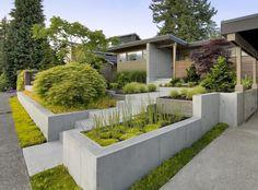 aménagement jardin en pente minimaliste, végétation opulente et murs de soutènement en béton