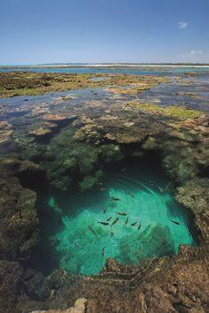 Porto de Galinhas foi eleito um dos dez lugares mais bonitos do Brasil