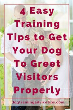 Dog Obedience Training - Getting your dog to greet visitors properly is a good way to show how well-behaved your dog is. We provide 4 Easy Training Tips to help you do just that. Basic Dog Training, Puppy Training Tips, Training Dogs, Training Online, Potty Training, Training Schedule, Crate Training, Training Classes, Leash Training