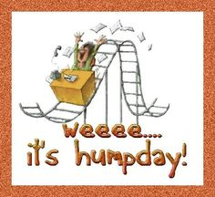 Happy Hump Day Meme - Images, Humor and Funny Pics Happy Hump Day Meme, Hump Day Images, Good Morning Happy, Beautiful Dolls, Funny Pictures, Funny Pics, Funny Stuff, Projects To Try, Funny Memes