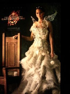 Hunger games 2 - ready for it!