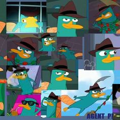 Perry the platypus wallpaper x hd wallpapers pinterest perry the platypus images it a perry hd wallpaper and background perry the platypus wallpapers wallpapers voltagebd Images