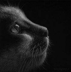 Cat by =Dragarta on deviantART- this is a drawing... yeah... I know