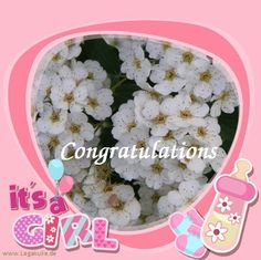 Sie finden auf dieser Seite lizenzfreie, weil von mir selbst fotografierte und verschönerte Bilder, kostenlos zum Download. #girl #parents #happy #pink #pregnant #love #daughter #sweet