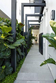 Side Yard Landscaping, Modern Landscaping, Backyard Patio, Tropical Pool Landscaping, Modern Landscape Design, House Landscape, Contemporary Landscape, Front Yard Design, Patio Design