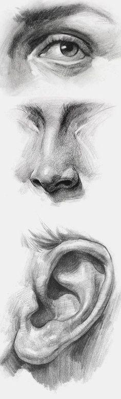Life Drawing, Drawing Sketches, Cool Drawings, Pencil Drawings, Painting & Drawing, Sketching, Drawing Skills, Drawings Of Eyes, Human Body Drawing
