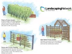 This infographic shows simple methods of screening your vegetable garden from view so you need not look at it in the off season. More about food gardening here: http://www.landscapingnetwork.com/landscaping-ideas/food-gardens.html