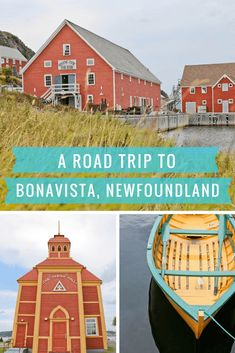 A Roadtrip to Bona Vista Newfoundland Newfoundland Canada, Newfoundland And Labrador, New Travel, Family Travel, Solo Travel, Alberta Canada, Quebec, Gros Morne, Road Trip Hacks