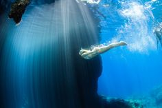 Explore the unexplored with the most experienced scuba diving team in Crete. Stuff To Do, Things To Do, Underwater World, Crete, Scuba Diving, Whale, Tours, Explore, Animals