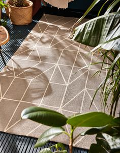 Crossed Fingers, Scion, Indoor Outdoor Rugs, Plant Leaves, House Design, Steel, Modern, Popular, Products