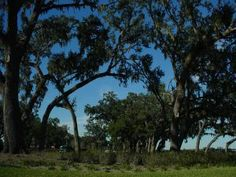 The Villages, FL, USA