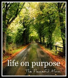 Live Life On Purpose--Be inspired! The Peaceful Mom