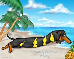 Wiener Babe on the Beach: Black and Tan