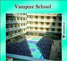escola de vampiros...