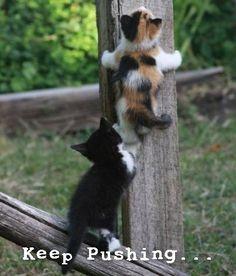 lekce v lezení :-D
