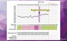 Temperatur Steigt Während Periode