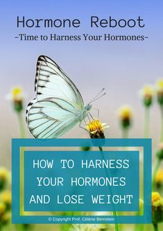 Get my Free Guide now and put your weight loss in motion Health And Nutrition, Health And Wellness, Health Tips, Health Fitness, Polycystic Ovary Syndrome Pcos, Lose Weight, Weight Loss, How Are You Feeling, Stress