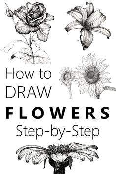 Learn to draw flowers with a pen and pencil and create your own beautiful floral art Many flower drawing examples and an easy guide flowerdrawing drawing floralart flowerart - Pencil Sketch Drawing, Pencil Art Drawings, Doodle Drawings, Art Drawings Sketches, Disney Drawings, Horse Drawings, Sketches Of Nature, Drawing With Pen, Pencil Drawings Of Flowers