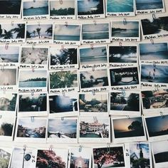 polaroids / scrap booking of someone's life; persona-ish way of telling how someone used O&D throughout time?