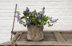 Znalezione obrazy dla zapytania koszyki dekoracyjne z kwiatami