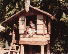 Tree House at the Nut Tree