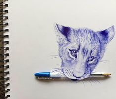 Inked Animals Drawn in Ballpoint Pen Ink Pen Art, Ballpoint Pen Drawing, Animal Drawings, Art Drawings, Ballpen Drawing, Ecole Art, Figure Sketching, Drawing Projects, Animal Tattoos