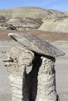 textless - The Bisti/De-Na-Zin Wilderness, south of...