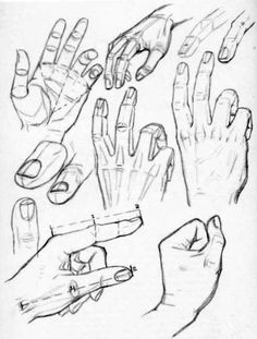 Constructing and Drawing Hands in the Right Way