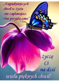 Good Morning, Funny Quotes, Bee, Bouquet, Humor, Women's Fashion, Messages, Good Morning Funny, Photo Illustration