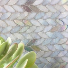 """Working on tile selections for a gorgeous new home in Dallas and these caught my eye!""-Denise McGaha #dmdesigns #designingwithadeadline #blue #mosaic #succulents #DallasShowhouse"