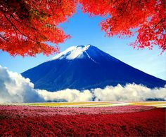 Mount Fuji, Autumn