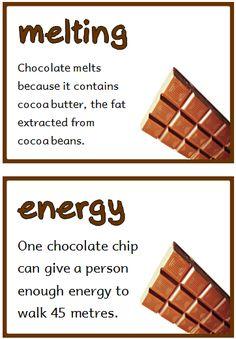Chocolate Fact Cards - Treetop Displays - Printable EYFS, KS1, KS2 classroom displays & primary teaching resources