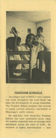 Freedom of children essay