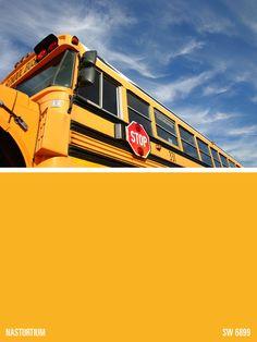 15 Best Bus Painting Images Bus Conversion School Bus
