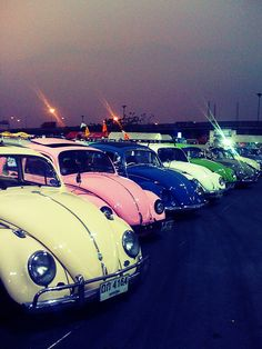 VW Beetles...Brought to you by #House of #Insurance in #EugeneOregon