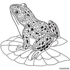 Zentangle frog coloring page                              …                                                                                                                                                                                 Más                                                                                                                                                                                 Más