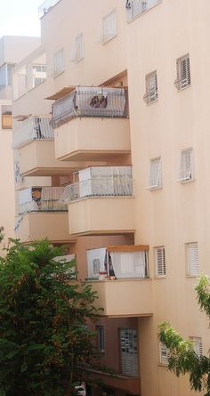 Sukkot on balconies in Israel- You don't need a lot of room for a sukkah! Terra Santa, Palestine, Feasts Of The Lord, Simchat Torah, Feast Of Tabernacles, Messianic Judaism, Jewish Festivals, Yom Kippur, Rosh Hashanah