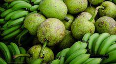 Breadfruit & Green Figs Caribbean Wallpaper by Patrick Bennett