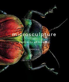 *Microsculpture*